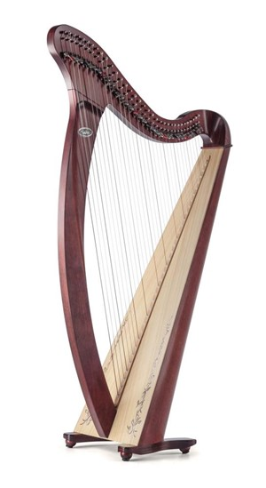 Arp Salvi Donegal Professional Lever 34 strings