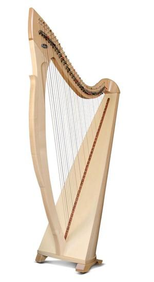 Arp Salvi Egan Electroacoustic Lever 38 Strings