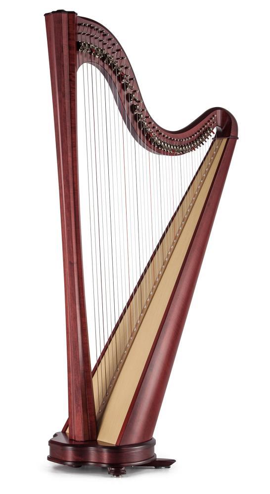 Arp Salvi Hermes Lever 40 Strings