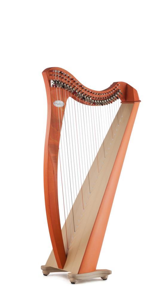 Arp Salvi Juno Student Lever 27 strings