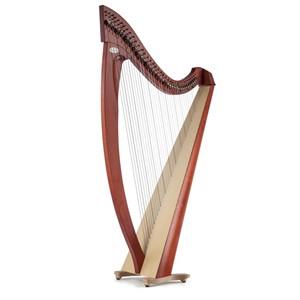 Arp Salvi Titan Student Lever 38 strings