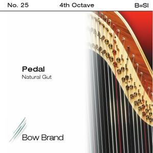 Arp Tel Bow Brand bağırsak 4. Oktav B pedal