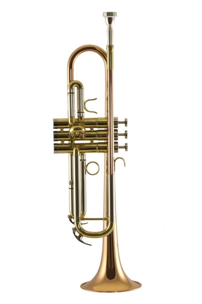 Trompet Trevor James Renaissance 4500